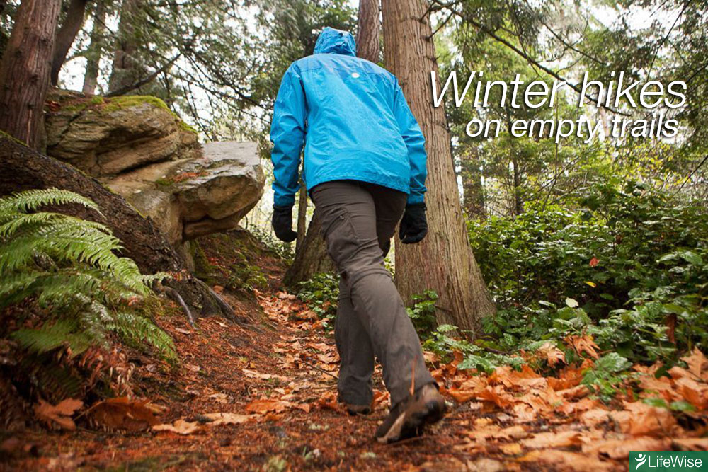 Winter-trail-hikes
