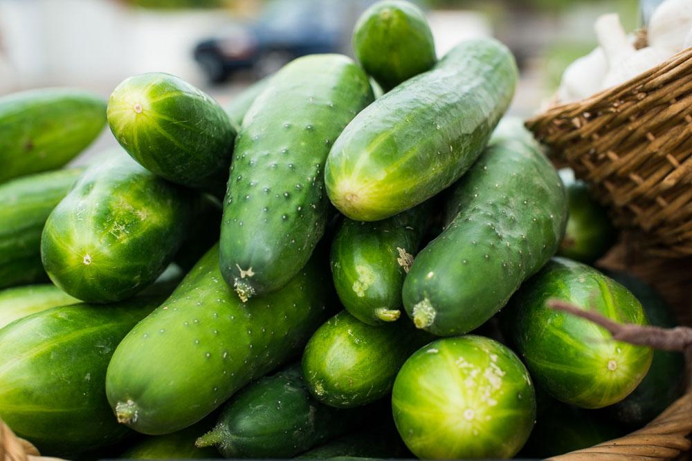 Mudjoy Farms vegetables