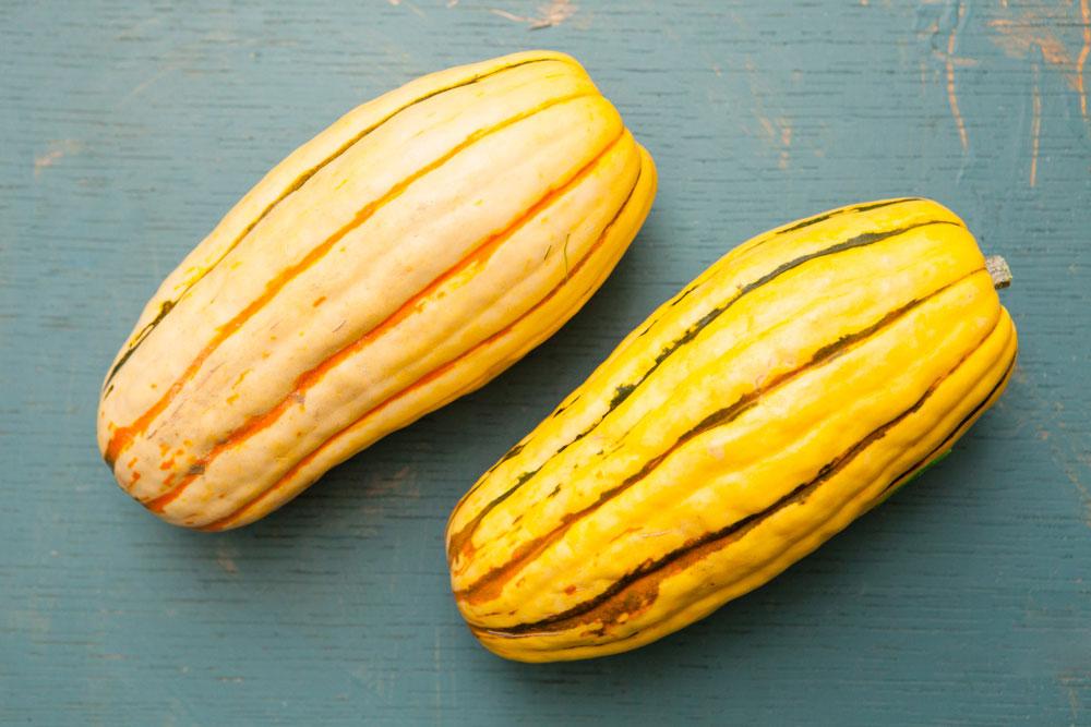 Northwest Fall Produce Delicata Squash