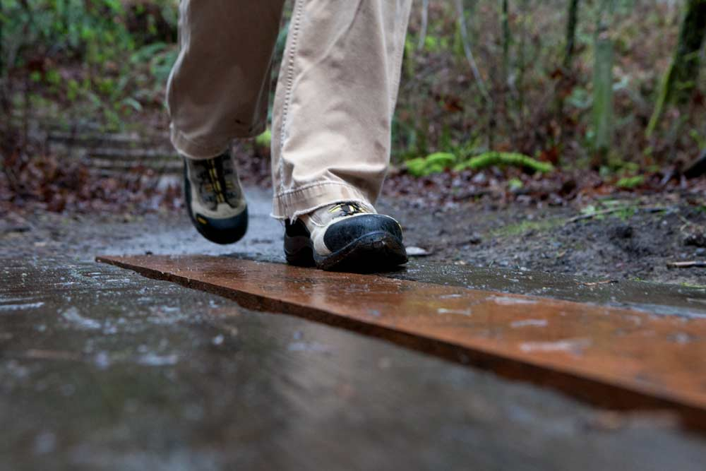 rainy day hikes near seattle