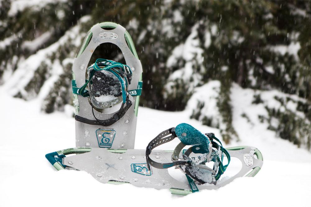 Snowshoe-