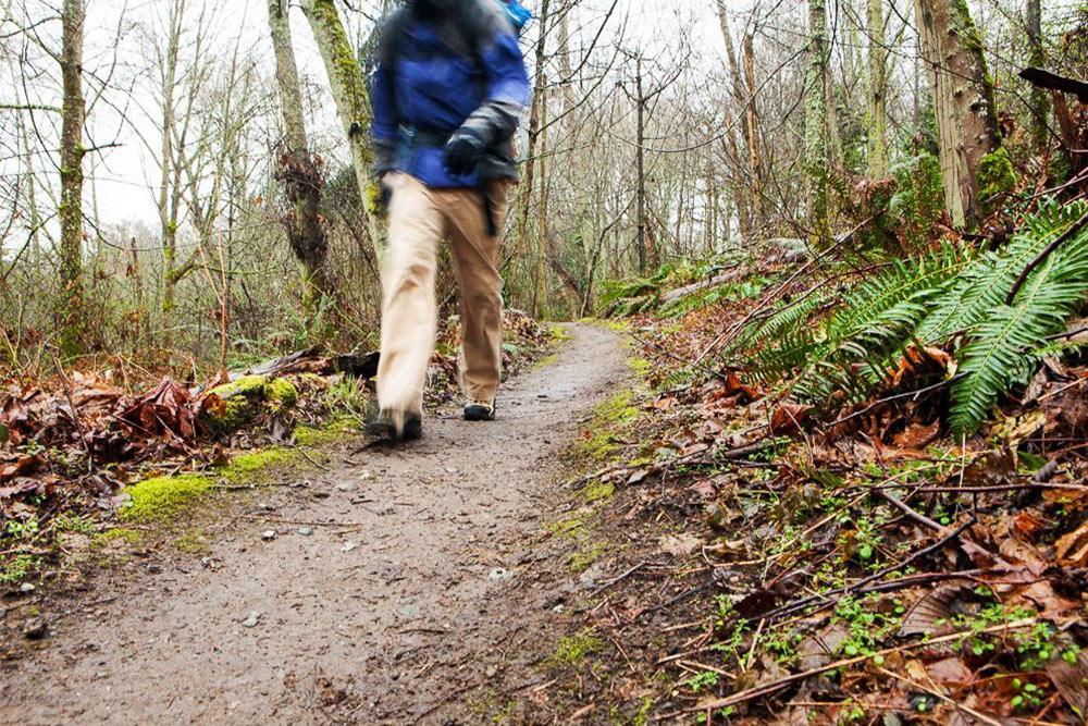 Spring-Hiking