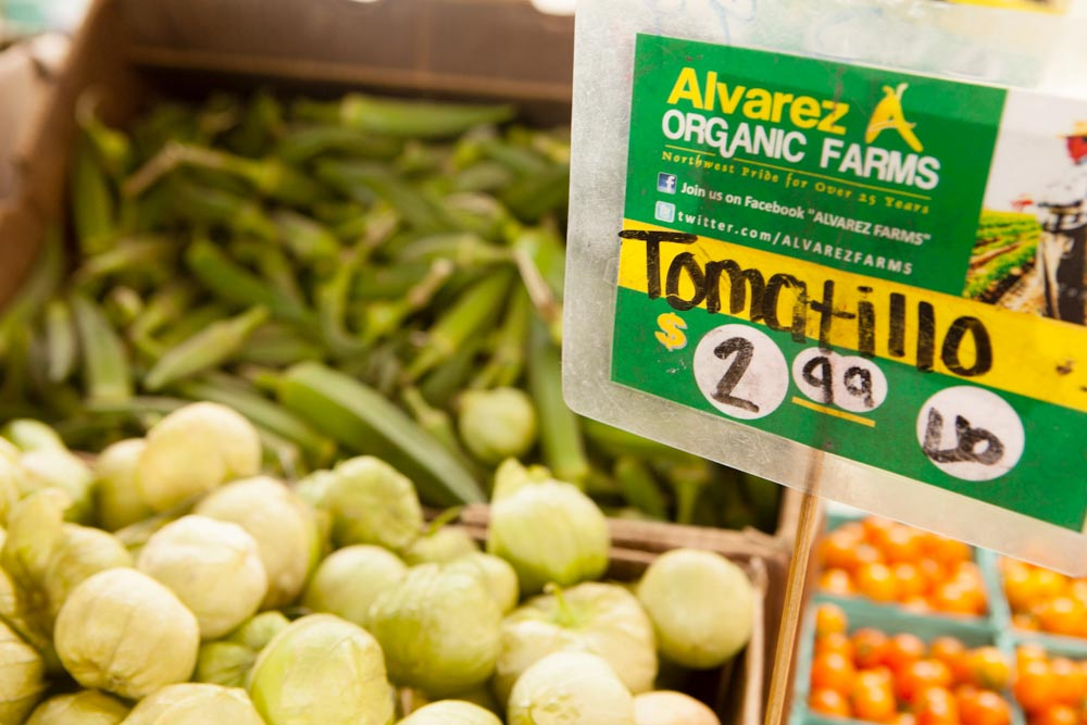 organic farming tomatillos