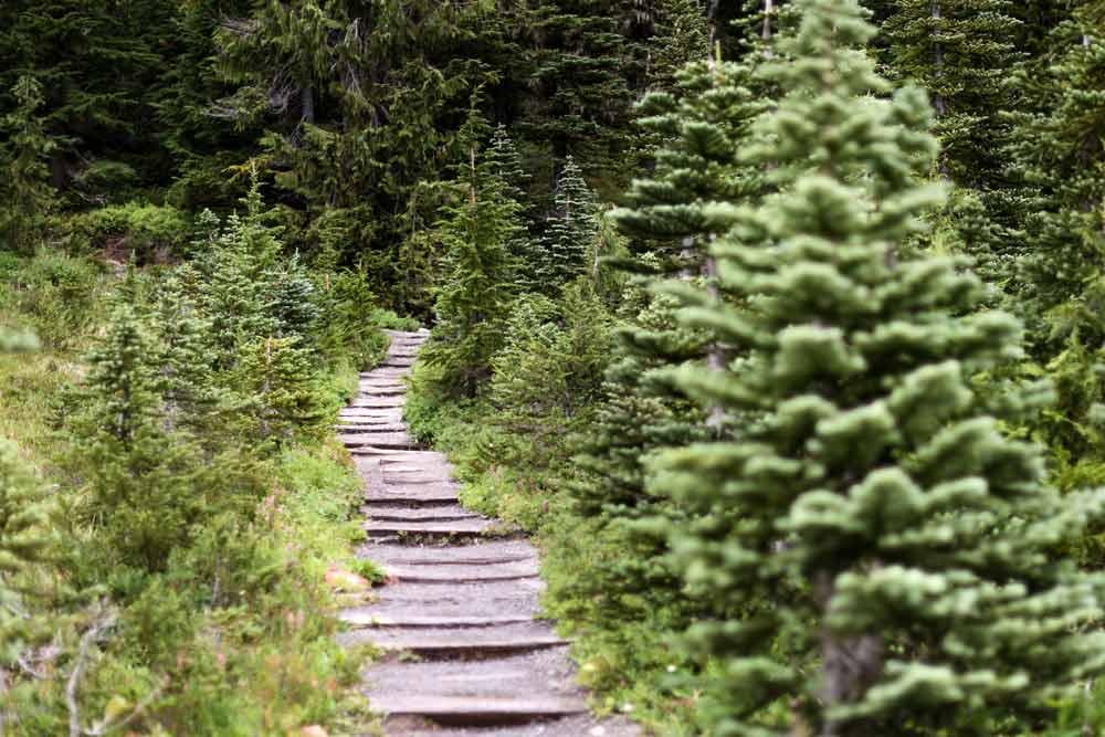 extreme trails wonderland trail