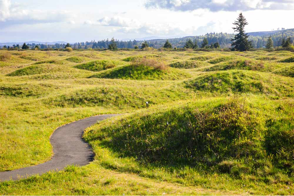 natural wonders of the northwest mima mounds